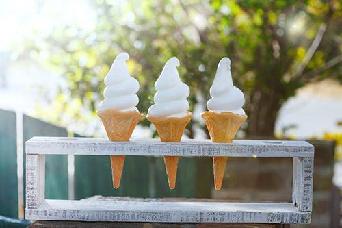 大人気の「はちみつソフトクリーム」美味しさのヒミツ大公開!